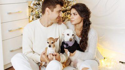 couple with pets 400x226 - 3 Wege wie Haustiere für die Gesellschaft wichtig sind